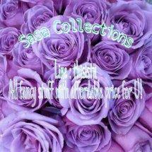 Sasa Collections