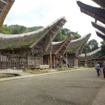 Kopi Arabica Toraja