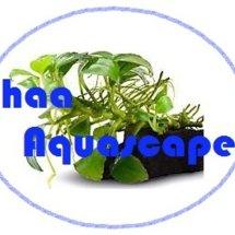 haa Aquascape