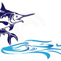 Pet & Fish Shop