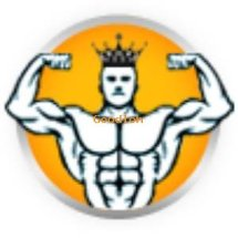 KING SUPLEMEN