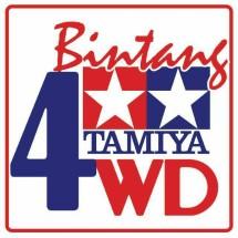 Bintang Tamiya 4WD