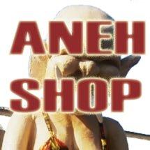 Aneh Shop