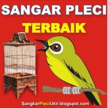 Sangkar Pleci Ukir