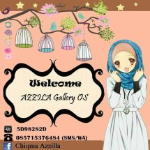 AZZILA Gallery OS