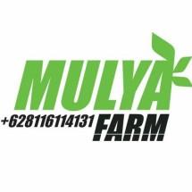 MulyaFarm