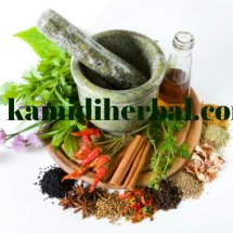 jamu kamidi herbal