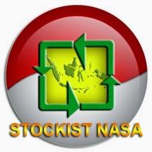 Logo INDO NASA