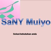 SaNY Mulyo