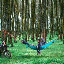 Caldera hammock