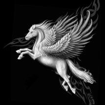 Pegasus Station