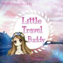 Little Travel Buddy