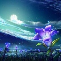Moon Lite Fleur
