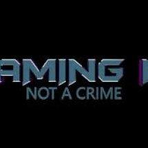 GameNotCrime