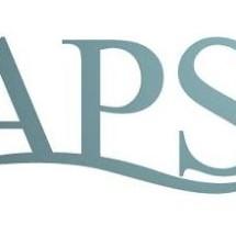 APS Shoes Store