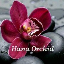hana orchid