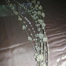 bunga bambu / pring