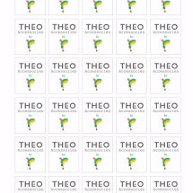 Theo Accessories