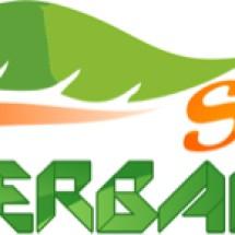 Grosir Herbal Murah