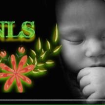 Logo NLS Baby Shop