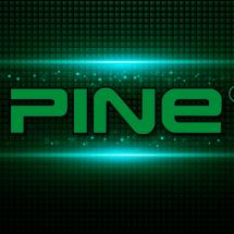 Logo Pine Premium Gadget Acc