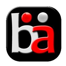 Bernice Accessories Logo