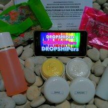 Logo DROPSHIPers