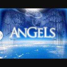 Angels Electric Bandung