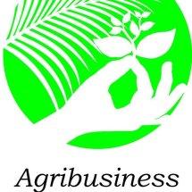 Agrobisnis Palembang