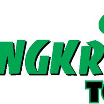 Logo jangkriktoy