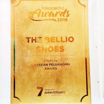 The Bellio Shoes