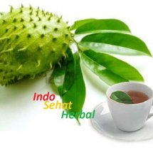 Indo Sehat Herbal