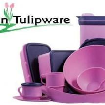 elsa tulipware