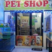 MEME OldShop    Pet Shop