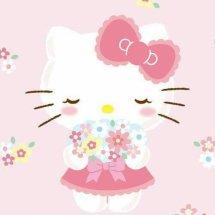 Hello Kitty Shop Ind