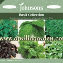 Aprilia garden
