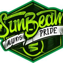 Sunbeam Cloth