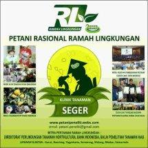 Rizki Bertani RL