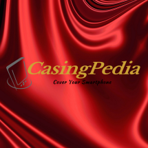 CasingPedia