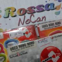 Logo Rossa Nocan
