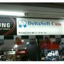 Logo DeltaSoftCom