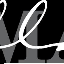 Logo Domani