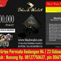 dmofa online shop