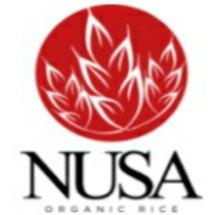 Logo Natural Sehat Sentosa