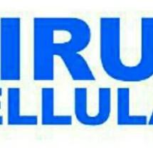 Logo viruzcell