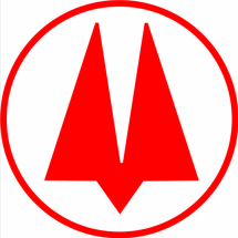 Logo MCG Store