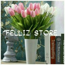 Felliz Store