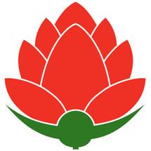 Logo iis_olshop
