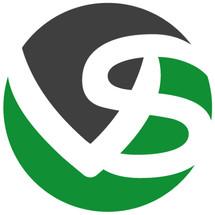 Logo Vayn Store