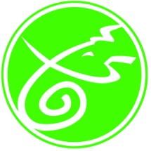 ganesha zone Logo